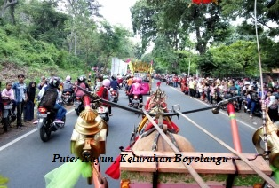 Meriah, Tradisi Puter Kayun Dalam Banyuwangi Festival