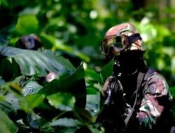 Pemimpin Papua Merdeka Paling BerbahayaLekagak Telenggan Tewas Dalam Adu Tembak Dengan Kopassus dan Kostrad
