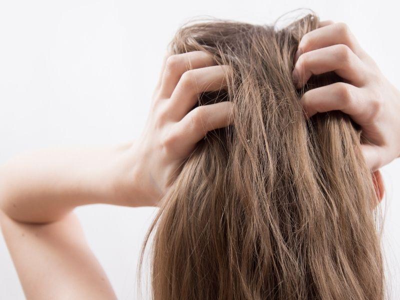 Punya Rambut Kering atau Lepek? Ternyata Ini Beberapa Penyebab Terjadinya