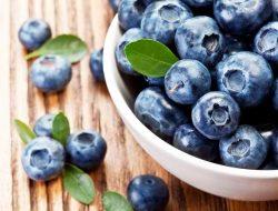 Konsumsi Jus Blueberry Sangat Bermanfaat Bagi Kesehatan Kamu, Yuk Ketahui Manfaatnya