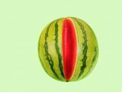Selain Punya Banyak Nutrisi, Ini Manfaat Buah Semangka yang Baik untuk Tubuh