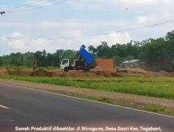 Menyorot Alih Fungsi Lahan Produktif Di Sekitar Jalan Wiroguno Dasri