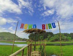Menikmati Danau Alami Ala Pantai Selatan Banyuwangi di Wisata Rowo Biru